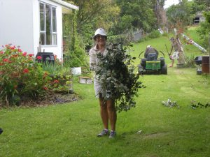 Clearing away the cuttings....